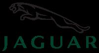 Logo marki Jaguar